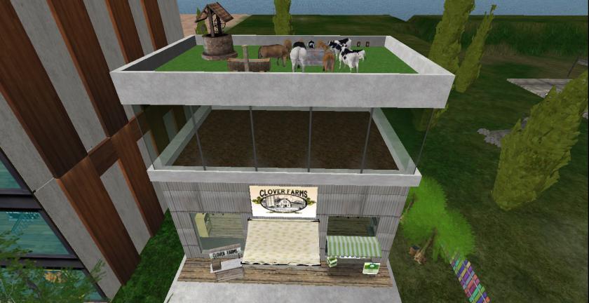 Main Store_002